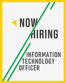 information technology officer job